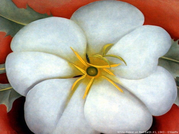 Georgia o' Keeffe, White flower on red earth